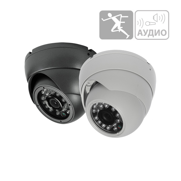 PD20-M2-B3.6IRA-IP POLYVISION